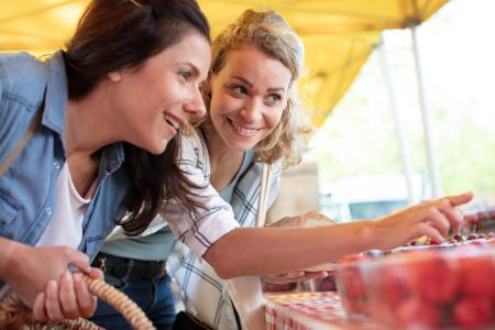Ontbinden geregistreerd partnerschap en alimentatie - Scheidingsplanner Den Haag & Rijswijk
